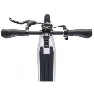 Электросамокат CityBug 2S E-Scooter (черный)